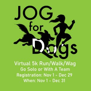 Jogs for Dogs with Clear Canine Cancer